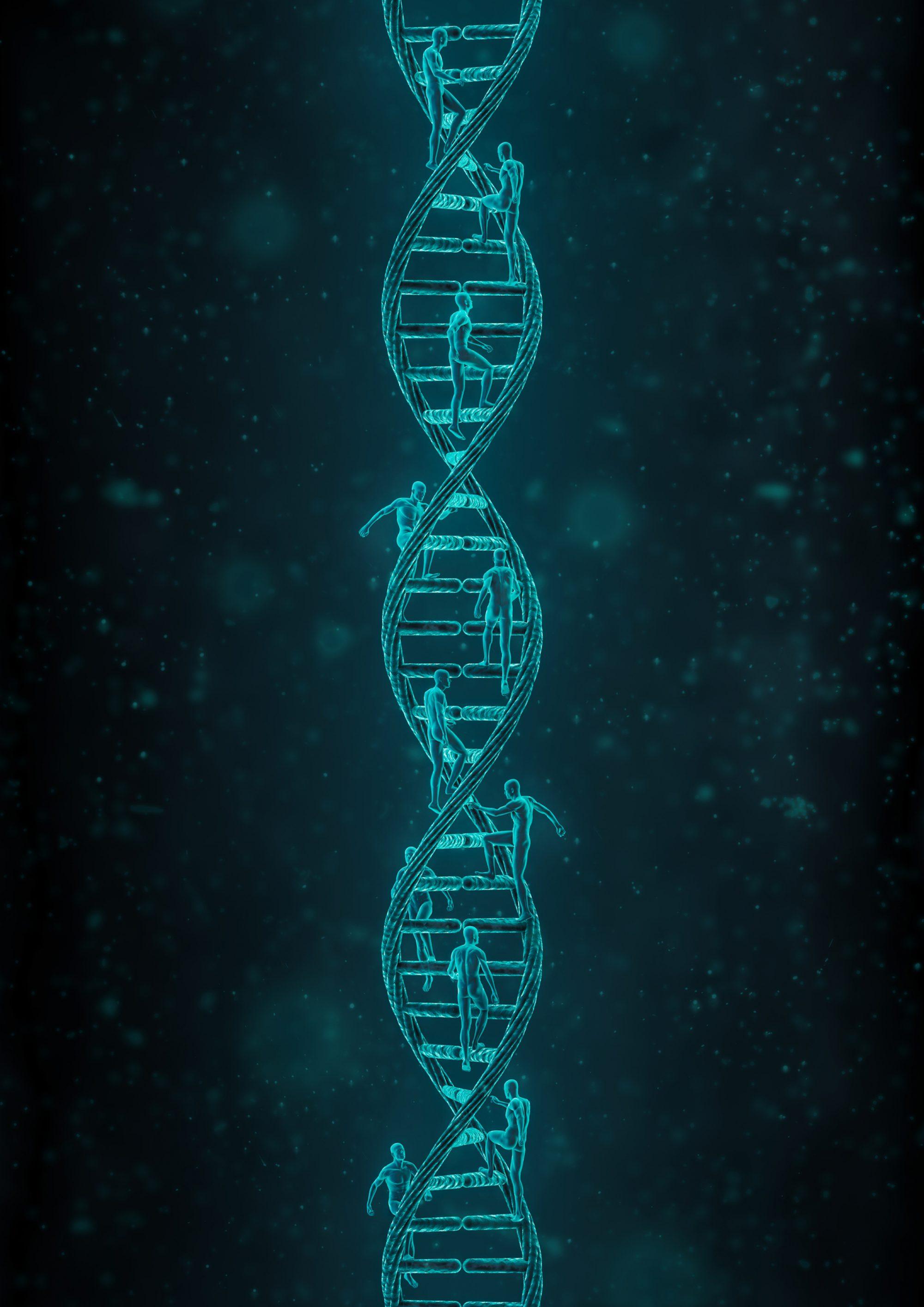 Treppenbau ist unsere DNA